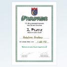 12. Drachenbootrennen in Grabow Platz 2 - Jahr 2012